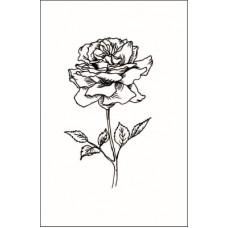 Роза  3,2 см х 5,4 см.