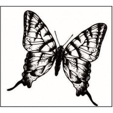 Бабочка1   3,0 см х 2,8 см