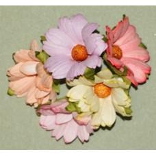 Хризантемы пастель микс, 4,5см.  5шт