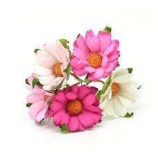 Хризантемы розовый микс, 4,5см.  5шт