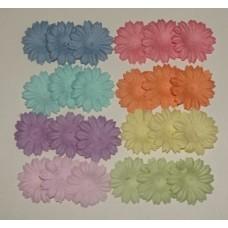 Цветы. Маргаритки микс пастель, 2,5см (40 штук)