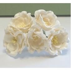 Магнолия белая , размер цветка 35 мм (5шт)