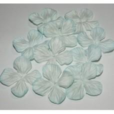 Гортензия  аква(цвет морской волны).  2,5см(10 штук)