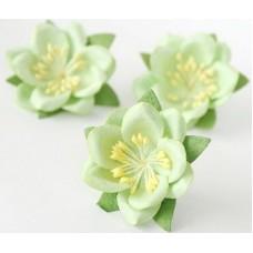 Цветы. Сакура - Св.зеленая диаметр  4.5 см, длина стебля 1.5 см