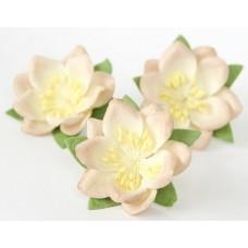 Цветы. Сакура - Св.бежевый диаметр  4.5 см, длина стебля 1.5 см