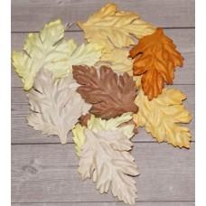 Листья коричневые микс, без стебельков длина 4,5 см ширина 2,5 см. Набор 10 шт