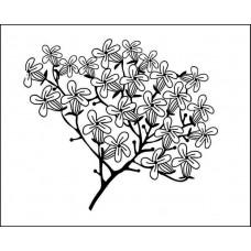 """Серия """"Цветы и травы""""  5,5см х 4,8см"""