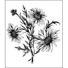 """Серия """"Цветы и травы""""  5,2см х 5,8см"""