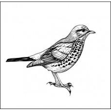 Птичка  5,0см х 3,6см