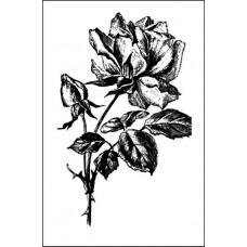 Роза 4,1 см х 6,5 см