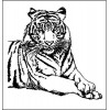 Тигр  4,7 см х 4,6 см