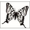 Бабочки, птички, кошки и прочая живность (122)